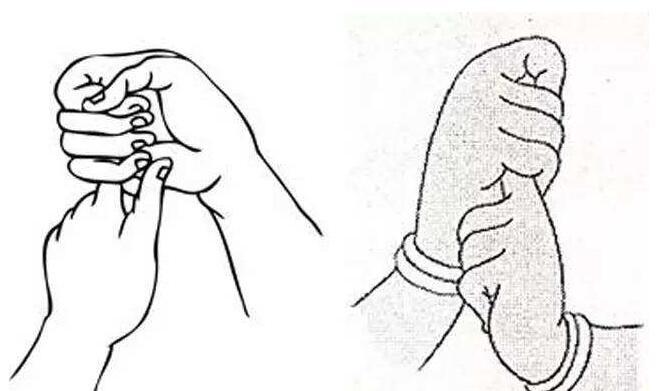 智拳印.jpg